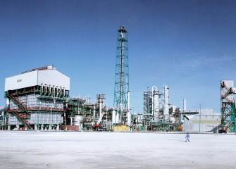 Qatar Fertiliser Co