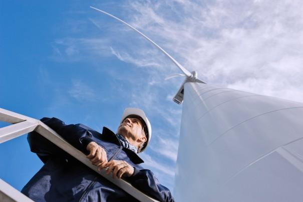 wind power bearings