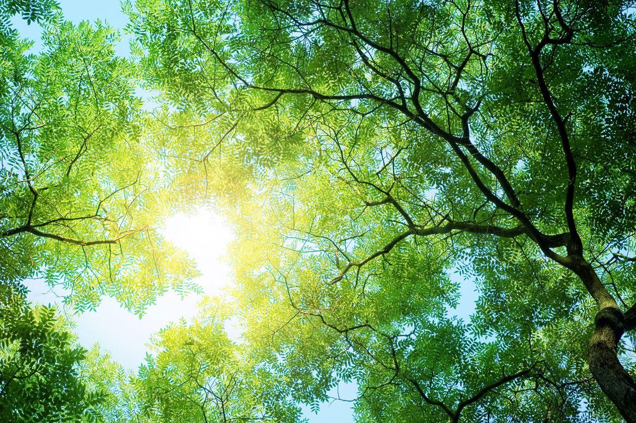 thyssenkrupp focuses on sustainability.